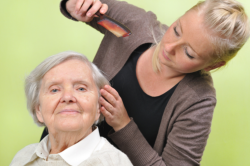 elderly woman having her hair groomed